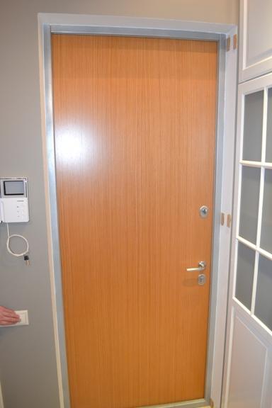 монтаж входной двери в сходне